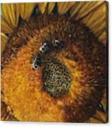 3 Bees Canvas Print