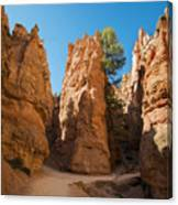 Spires On Navajo Trail Canvas Print