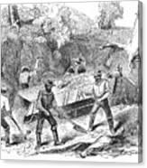 California Gold Rush, 1860 Canvas Print
