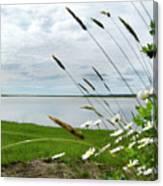Cape Cod Salt Pond Canvas Print