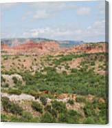 Caprock Canyon State Park  Canvas Print