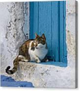 Cat In A Doorway, Greece Canvas Print