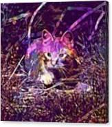 Cat Kitten Mieze Red Mackerel Tabby  Canvas Print