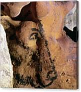 Cave Art: Horse Canvas Print