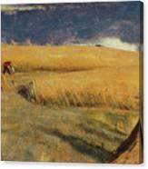 Cornfield At Ewell Canvas Print
