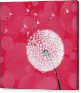 Dandelion Flying Canvas Print