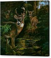3 Deer Watching Canvas Print