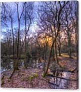 Early Morning Forest Pond Canvas Print