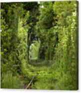 Famous Tunnel Of Love Location Canvas Print