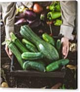 Farmer With Vegetables Canvas Print