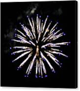 Firework Colors Canvas Print