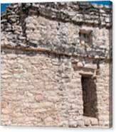 Grupo Nohoch Mul At The Coba Ruins  Canvas Print