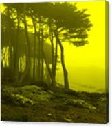Lands' End Canvas Print