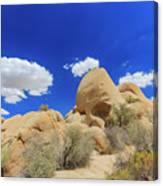 Landscape In Joshua Tree National Park Canvas Print