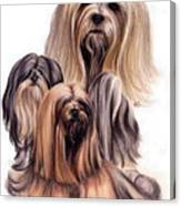 Lhasa Apso Triple Canvas Print