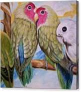 Flygende Lammet   Productions             3 Love Birds Perched Canvas Print