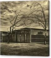 Modern Art Museum Of Fort Worth Canvas Print