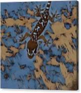 Mutedesigns Canvas Print