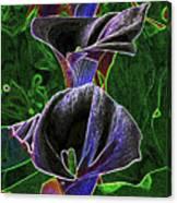 3 Neon Calla Lillies Canvas Print
