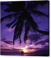 Palm Over The Beach Canvas Print