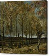 Poplars Near Nuenen Canvas Print