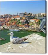 Porto Skyline Seagull Canvas Print