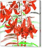 Red Lilies, Hand Drawn Painting Canvas Print