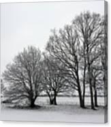 Snow On Epsom Downs Surrey Uk Canvas Print