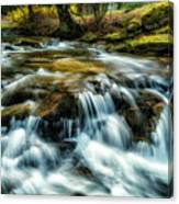 Spring Along Anthony Creek Canvas Print