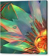 Teal And Peach Waterlilies Canvas Print