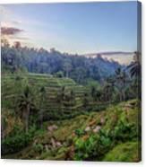 Tegalalang - Bali Canvas Print