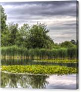 The Lily Pond  Canvas Print