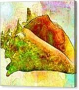 Underwater. Sea Shells Canvas Print