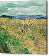Wheat Field With Cornflowers Canvas Print