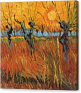 Willows At Sunset Canvas Print