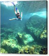 Woman Free Diving Canvas Print