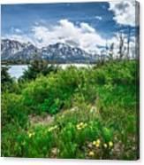 The White Pass And Yukon Route On Train Passing Through Vast Lan Canvas Print