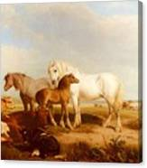 Willis Henry Brittan Horses And Cattle On The Shore Henry Brittan Willis Canvas Print