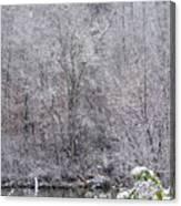 3003-snowscape Canvas Print