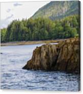 Alaska_00032 Canvas Print