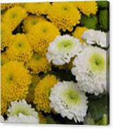 ,, Flowers ,, Canvas Print