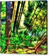 Landscape Image Canvas Print