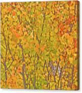 3983 Autumn Pleasure Canvas Print
