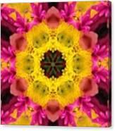 3d Pink Kaleidoscope Canvas Print