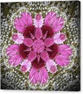3d Pink Purple Mandala Painting Canvas Print