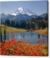 3m4824 Tipsoo Lake And Mt. Rainier H Canvas Print