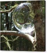 4-22-16--8699 Don't Drop The Crystal Ball, Crystal Ball Photography  Canvas Print
