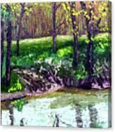 4 28 Canvas Print