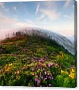 Acrylic Landscape Canvas Print