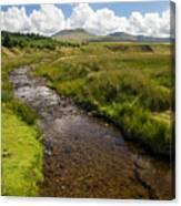 Brecon Beacons National Park 1 Canvas Print